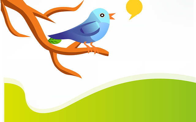 The Top Six Fundamentals of Using Twitter